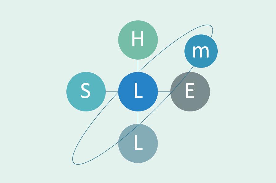 m-SHELモデル